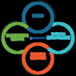 brigham experience logo